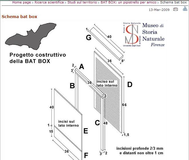 bat box.jpg