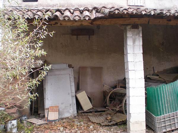 Civetta Manbrotta (3).JPG