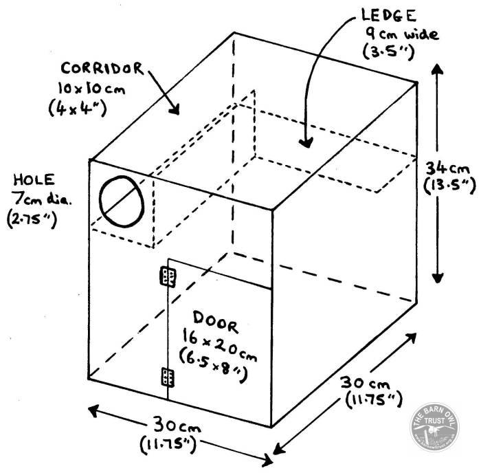 little-owl-nestbox_diagram.jpg