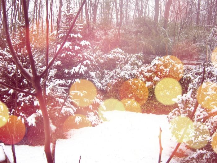 Neve 1° febbraio con ritocchi.jpg