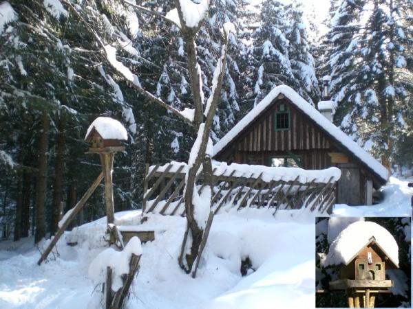 hutte2.jpg