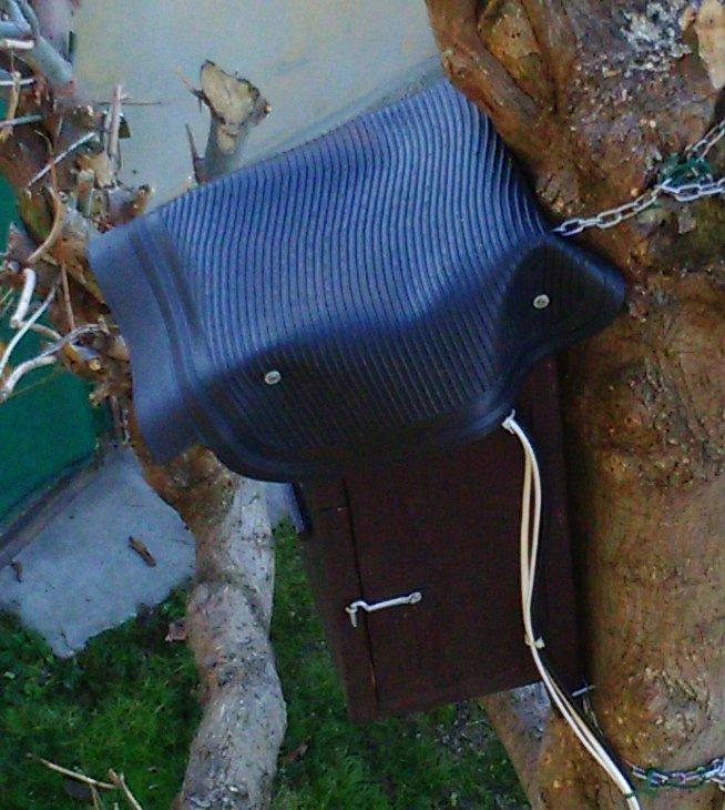 nido con telecamera 11.jpg